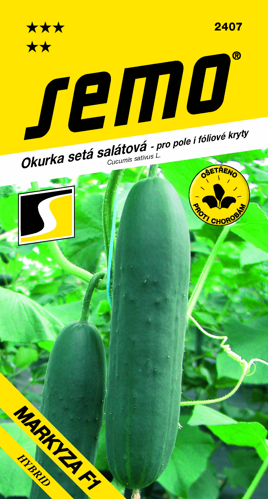SEMO Okurka salátová MARKYZA F1